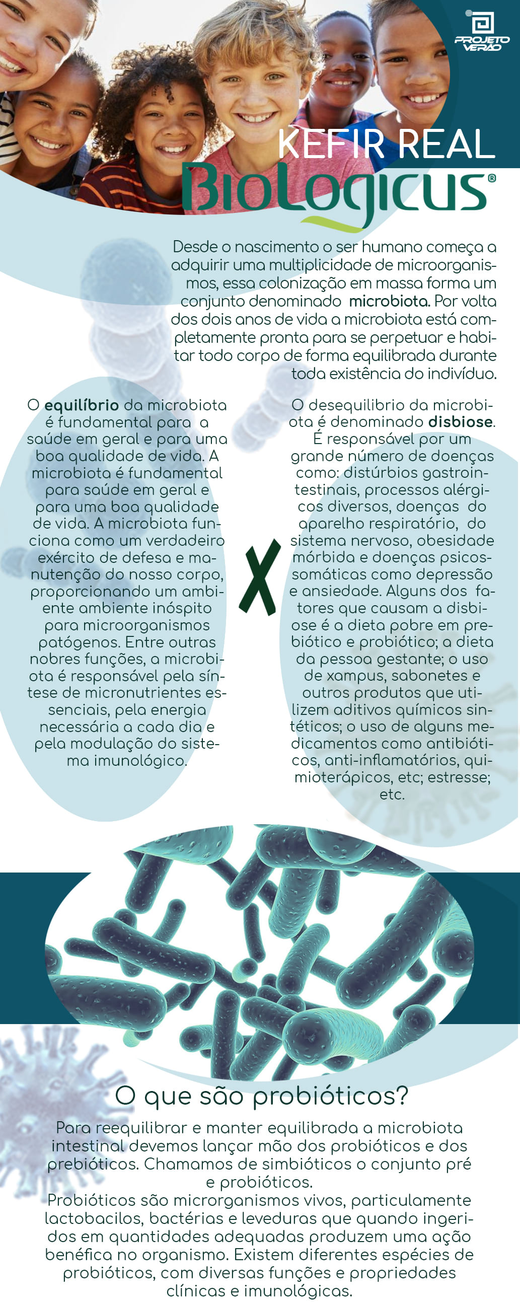 Kefir Real de Cálcio e Vitamina D3, Loja Projeto Verão