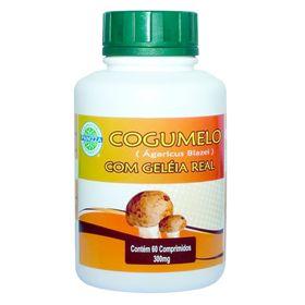 panizza-cogumelo-agaricus-blazei-geleia-real-60-comprimidos-300mg