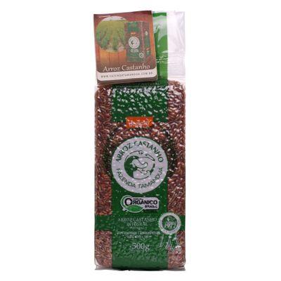 fazenda-tamandua-arroz-castanho-integral-500g-loja-projeto-verao-01