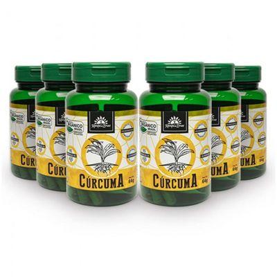 kampo-de-ervas-kit-6x-curcuma-organica-600mg-90-capsulas-vegetarianas-loja-projeto-verao