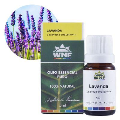 wnf-oleo-essencial-lavanda-5ml-loja-projeto-verao-planta