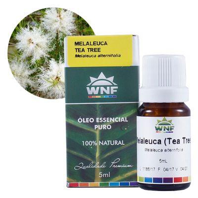 wnf-oleo-essencial-melaleuca-5ml-loja-projeto-verao-planta