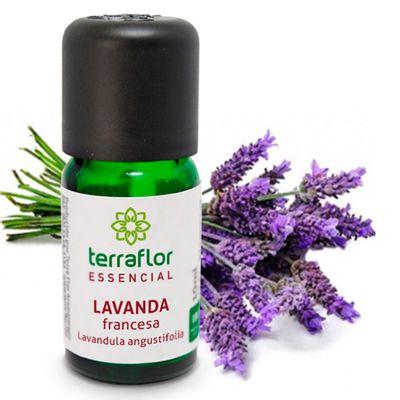 terra-flor-oleo-essencial-lavanda-francesa-10ml-loja-projeto-verao-planta