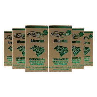 minasgreen-kit-6x-extrato-propolis-verde-40-alecrim-vitc-vite-250mg-120-capsulas-loja-projeto-verao