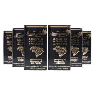 minasgreen-kit-6x-extrato-propolis-33-mg85-60caps-suplemento-vitaminac-vitaminae-250mg