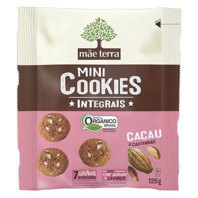mae-terra-mini-cookies-integrais-organico-cacau-e-castanhas-vegano-120g-loja-projeto-verao