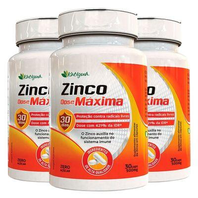 katigua-kit-3x-zinco-dose-maxima-500mg-30-capsulas-loja-projeto-verao