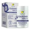 colageno-tipo2-1450mg-30capsulas-apisbrasil