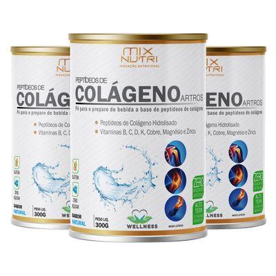 mix-nutri-kit-3x-colageno-artros-sabor-natural-300g-loja-projeto-verao