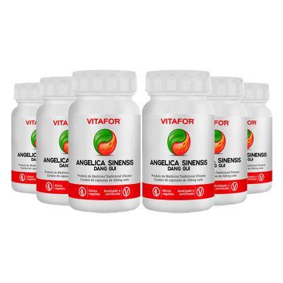 vitafor-kit-6x-angelica-sinensis-dang-gui-420mg-60-capsulas-loja-projeto-verao--1-