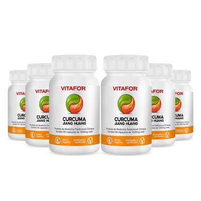 vitafor-kit-6x-curcuma-jiang-huang-1000mg-60-capsulas-loja-projeto-verao--2-