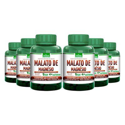 vitalab-kit-6x-malato-de-magnesio-500mg-60-capsulas-vegetarianas-loja-projeto-verao--1-