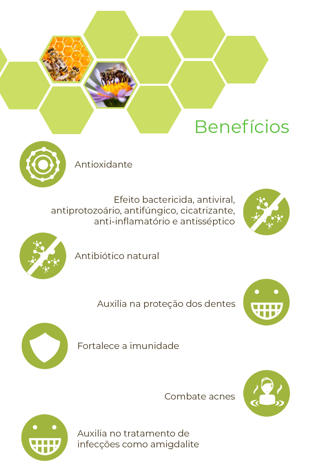 Extrato de Própolis 11% 30ml - Wax Green - Projeto Verao